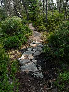 Stone tread trail construction over wet spot, Purcell's Cove Conservation Lands